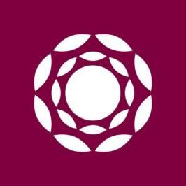 plaza-p-lounge-logo