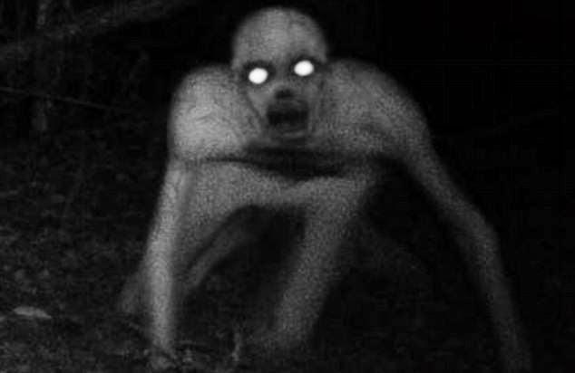 Image result for limau halau hantu